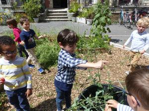 Fête du jardin à Saint Joseph